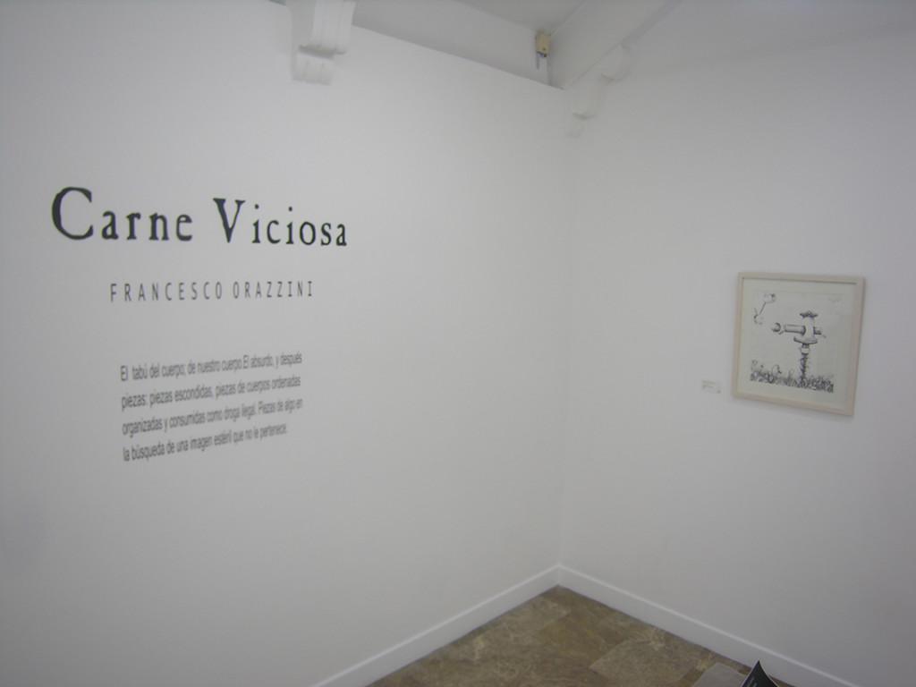 Invitación-Carne Viciosa-Art Space México & Francesco Orazzini 2016